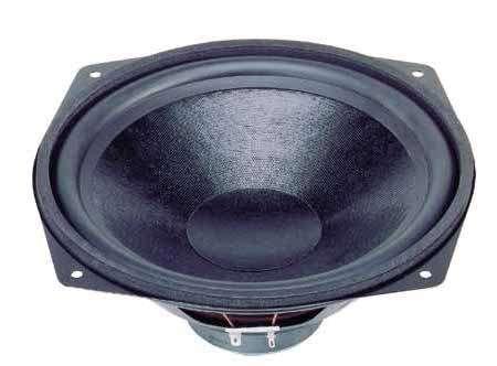 WS25E 262mm 10zoll Basslautsprecher 110W 8ohm Tieftöner