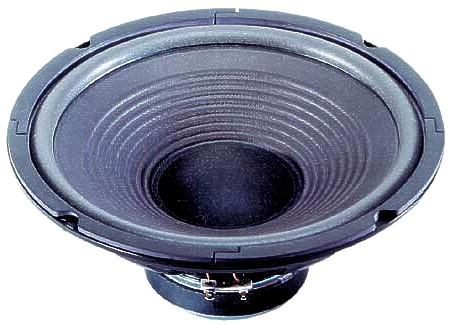 255mm 10zoll Basslautsprecher 130W 8ohm W250