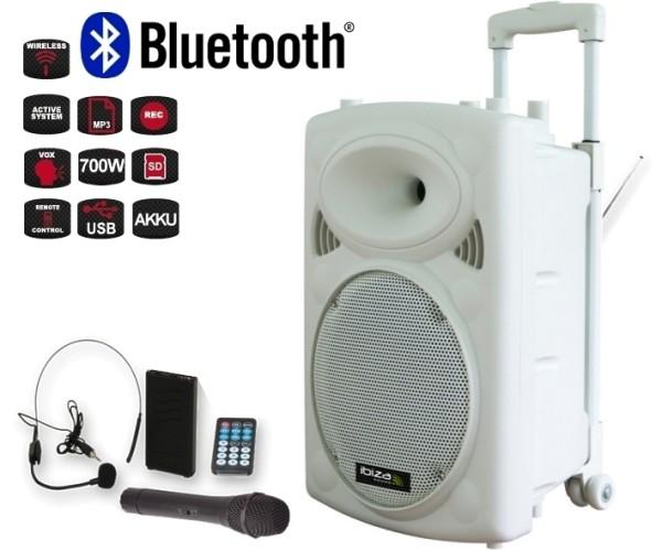 Mobile Musikanlage Beschallungsanlage mit MP3 Player USB 2xFunkmikro 700W Bluetooth